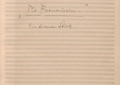 Bernauerin, Die