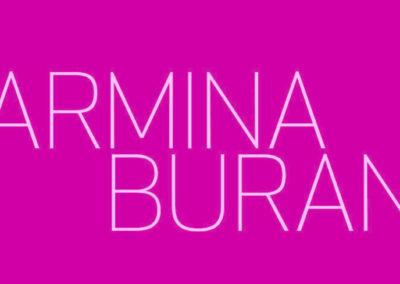Carmina Burana (12.04.2019 / 11.04.2019 / Norwegen / Trondheim)
